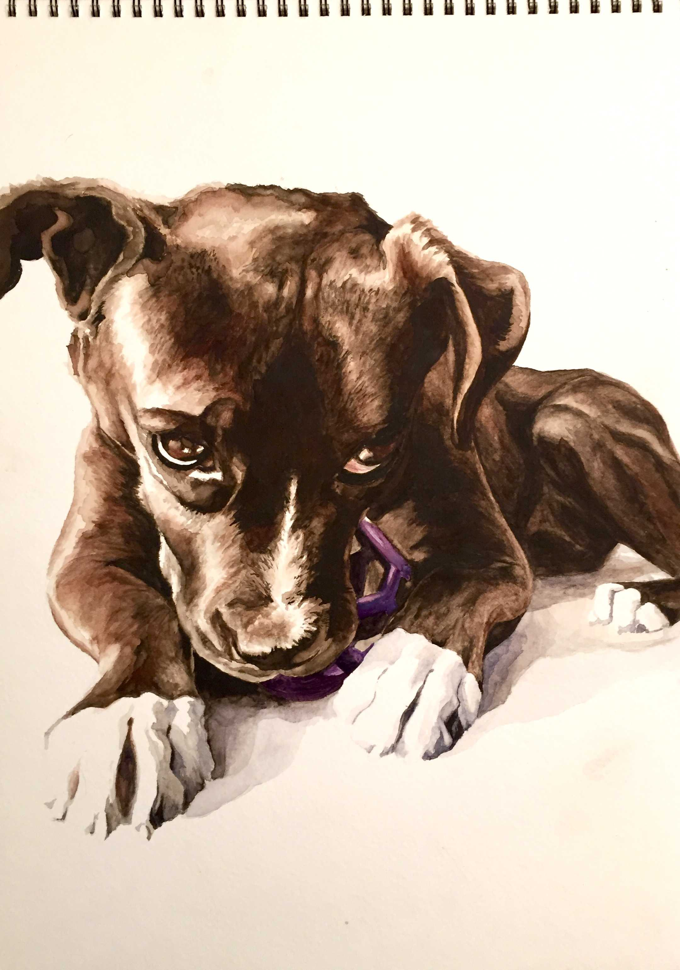 Mrs. Davidson's painting of her dog, Toby