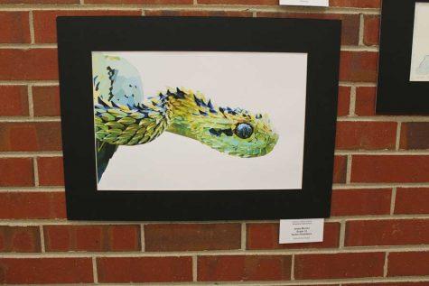 art-snake