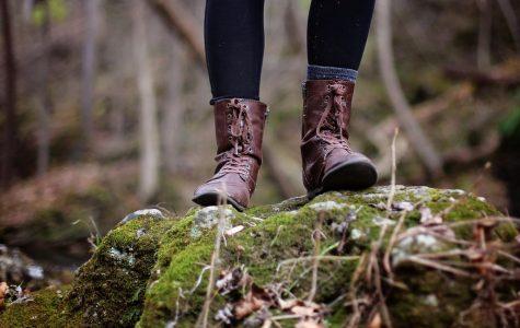 Summer Hiking Trails!