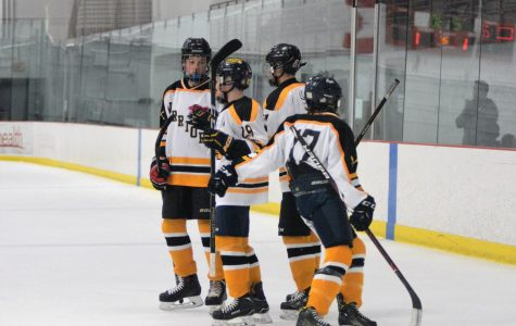 Spring Hockey Update (With Photos)