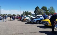 Spring Charity Car Show