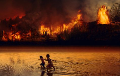 The Amazon's Burning Future